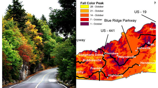 Leaves start changing in NC mountains Fall color map released WNCN