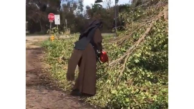 Florida nun grabs chain saw, clears trees post-Irma
