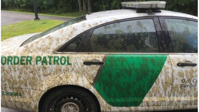 Man pleads guilty to spraying cow manure on Border Patrol cruiser